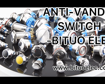 Anti-vandal Switch